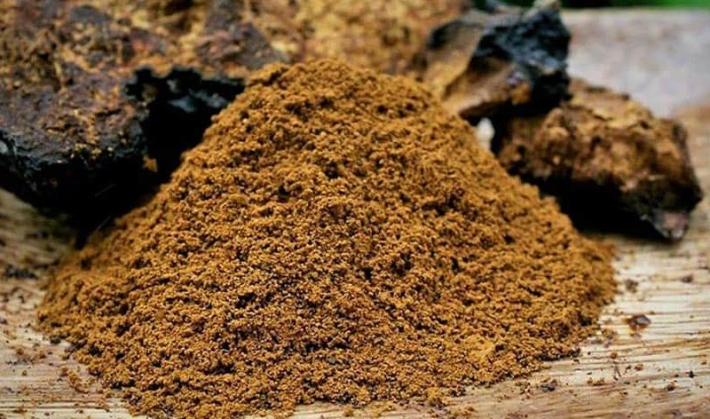 health-benefits-of-chaga